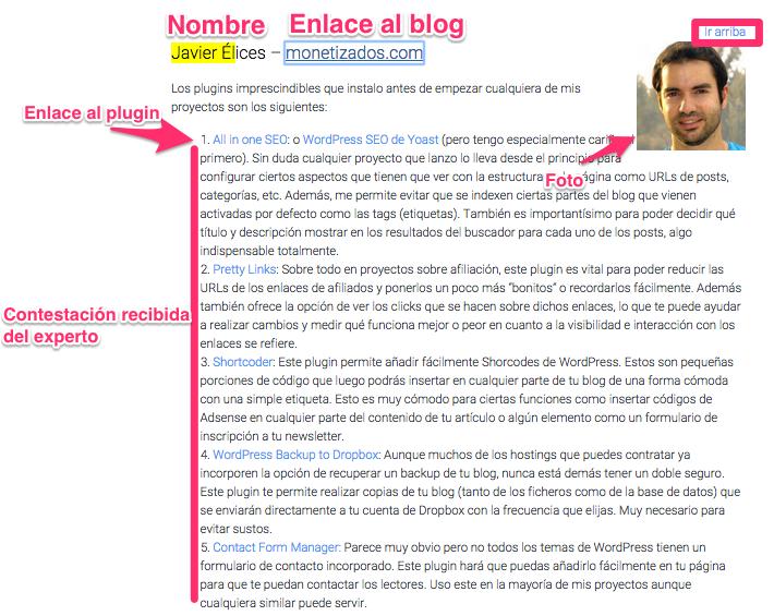 ficha experto WordPress